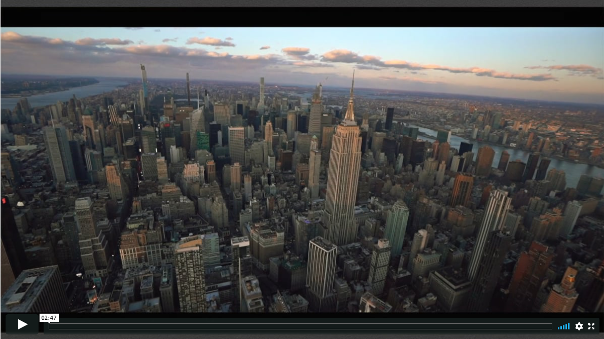 NYC Helicopter Marriage Proposal video